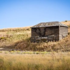 Farm structure in the Palouse