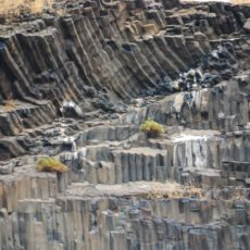 Characteristic basalt columns in Hell's Canyon